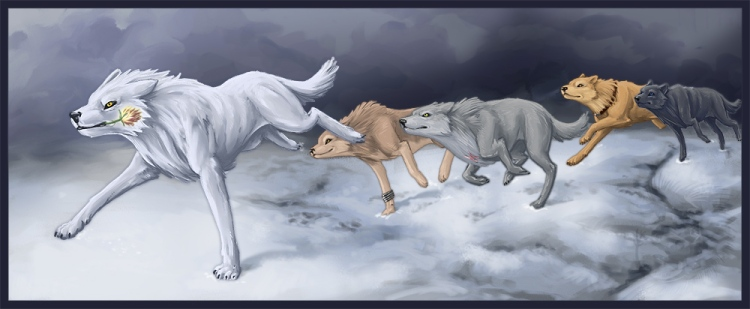 wolf%27s-rain
